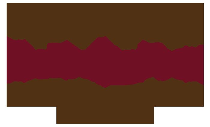 logo-banner-web